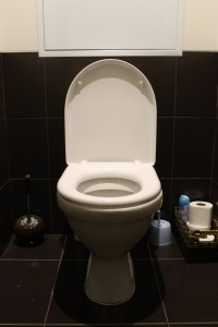 flushtoilet